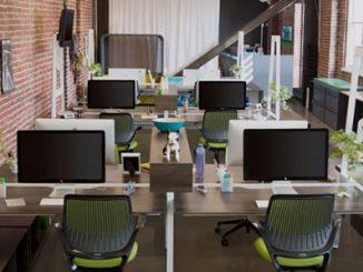 3 mẹo đơn giản giúp bạn trang trí văn phòng làm việc nhỏ nhanh chóng