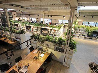 3 xu hướng thiết kế nội thất văn phòng cao cấp HOT nhất hiện nay