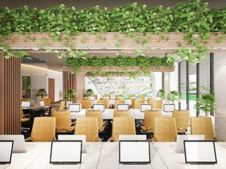 Sự khác biệt giữa thiết kế văn phòng xanh với văn phòng truyền thống