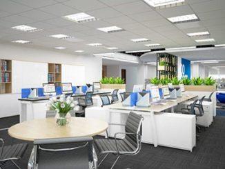 Tư vấn cách trang trí văn phòng công ty đẹp, hiện đại, không tốn chi phí